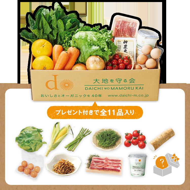 大地を味わう旬の野菜セット