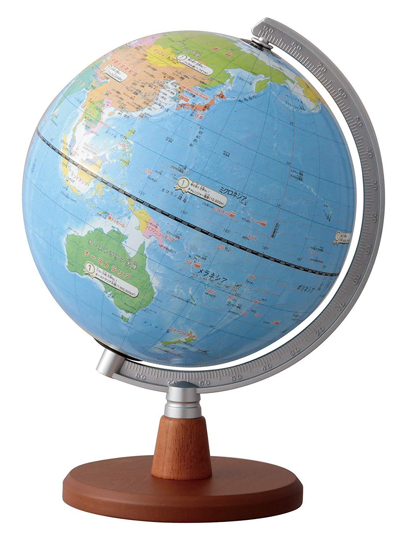 地球儀 先生おすすめ小学生の地球儀 20cm OYV11