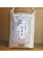 胚芽米 無洗米 となみ野米 コシヒカリ